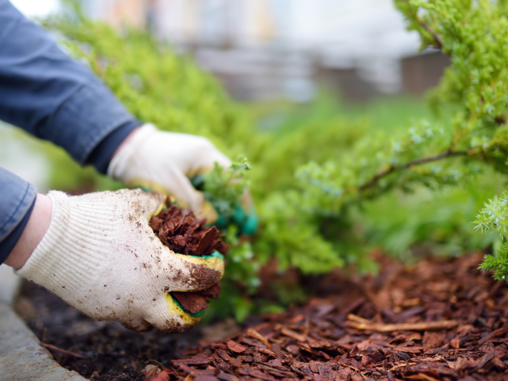 Landscaping with Bark Mulch